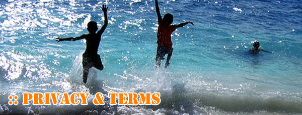 Privacy Terms Surf Shop Maldives Surf Surfing Guide