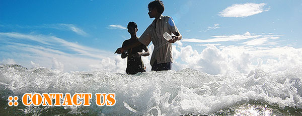 Contact Surf Maldives Surf Surfing Guide