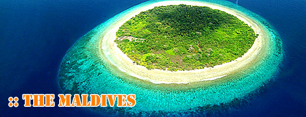 Maldives Surf Surfing Guide